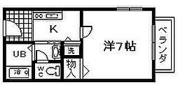 ディアスカワサキ[205号室]の間取り