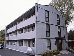 神奈川県相模原市緑区原宿2丁目の賃貸マンションの外観