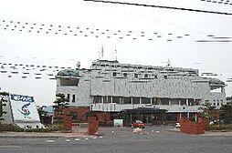 市役所です。