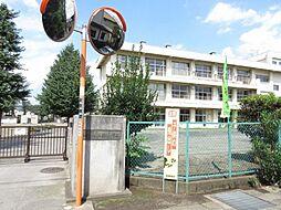 [一戸建] 神奈川県相模原市南区双葉2丁目 の賃貸【/】の外観