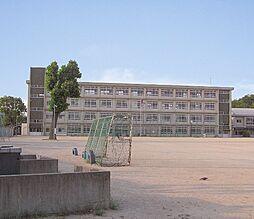 神野小学校…約...