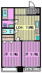 PLUMERIA北戸田[606号室]の間取り