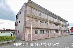 JR日豊本線 国分駅 徒歩32分の賃貸マンション