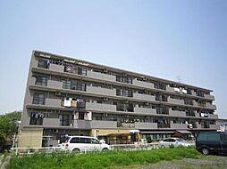 埼玉県川口市安行領根岸の賃貸マンションの外観