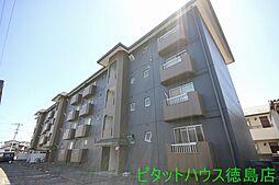 スカイハイツ新田[306号室]の外観