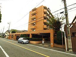 ダイアパレス福生武蔵野台 3階部分