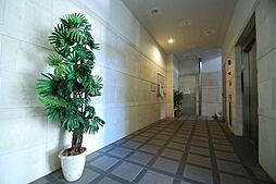 パレスサイド泉[5階]の外観