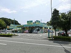 杏林堂薬局 富塚店(767m)