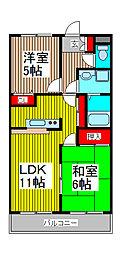埼玉県戸田市本町3丁目の賃貸マンションの間取り