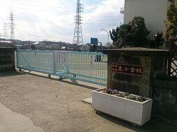 泉 小学校