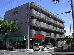 ドミール栄[2階]の外観