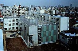 大学早稲田大学...