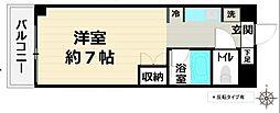 埼玉県東松山市元宿1丁目の賃貸マンションの間取り