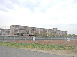 野口南小学校