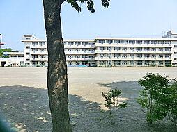 立野台小学校