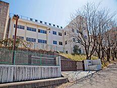 日野市立第三中学校 500m