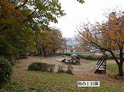 公園島の上公園...