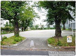 公園富士見ヶ丘...