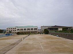 泉丘中(354...
