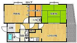ラフィーネ住之江[9階]の間取り