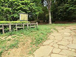 公園 約180...
