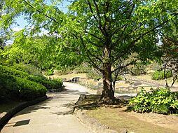 泉谷公園(80...