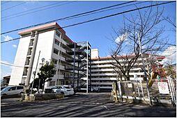 大阪府柏原市平野2丁目の賃貸マンションの外観