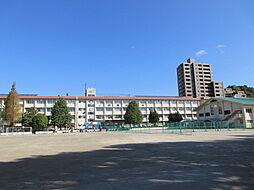 伊敷中学校