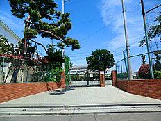 世田谷区立緑丘中学校まで896m