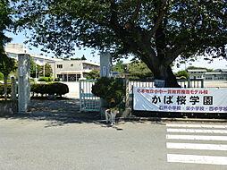 石戸小学校