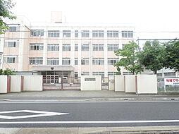 人気の姫路市立...