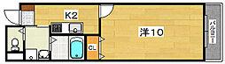 Lobelia court[3階]の間取り