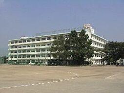 市立勝瀬中学校...