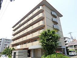 グレイスミシマ[6階]の外観