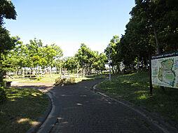 湖西運動公園(...