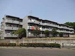 東京都西東京市栄町3丁目の賃貸マンションの外観