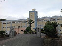 玄海中学校