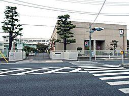 中和田中学校ま...