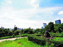 -西郷山公園-
