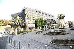 レイディアントシティ横濱カルティエ4