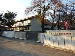 小学校水戸市立...