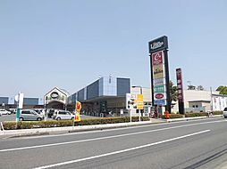 リブロス笠井(...