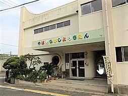 八幡東幼稚園、...