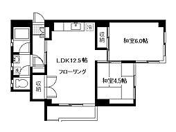 六本松コーポ[5階]の間取り