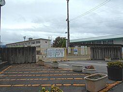 第三向陽小学校