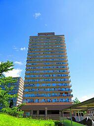 神戸ヒルズデイズ 17階住戸