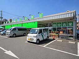 田中青果_駅前...