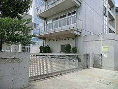 井荻中学校(徒歩6分 480m)