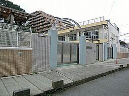 高津幼稚園-6...