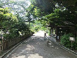 三渓園・日本庭...